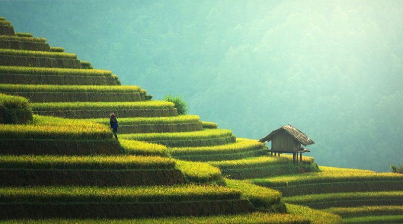 Авиабилеты онлайн в Тайланд